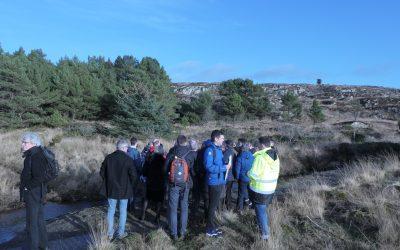 Miljødirektoratet kritisk til Karmøyvei