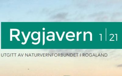 Rogaland på kryss og tvers i Rygjavern