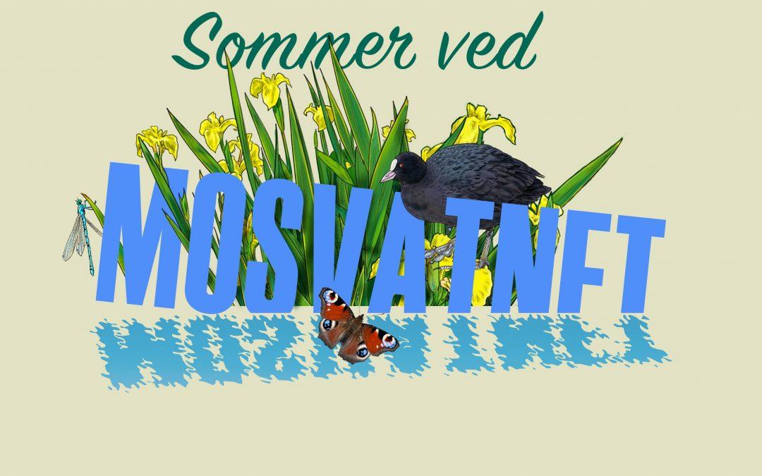Sommer ved Mosvatnet