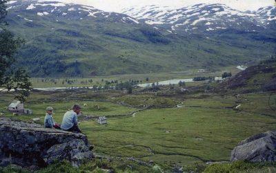 Skadene i Røldal og Suldal må rettes